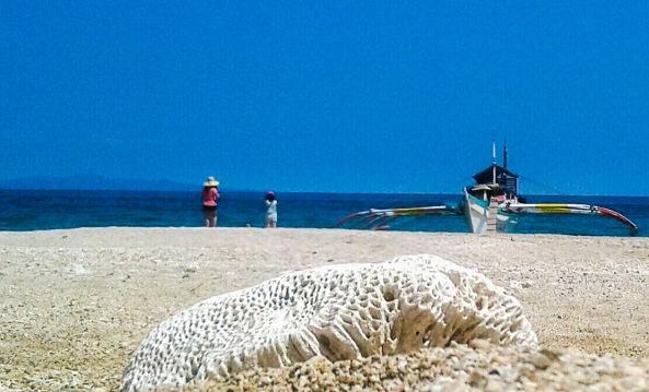 Animazola-burias-island